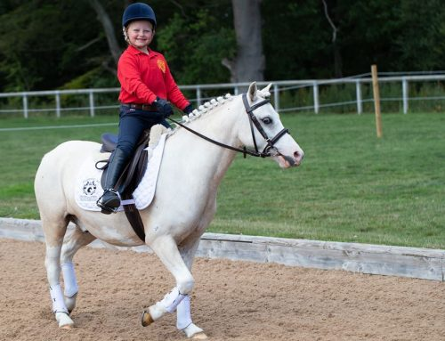 Oliver's First Pony Club Competition
